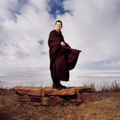 Why Should We Meditate - by Pema Chodron