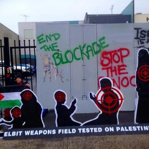 Pro-Palestinian activists shut down Israeli arms manufacturer Elbit Systems - Samantha Castro