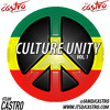 "DJ CASTRO ""The Ladies Choice"" CULTURE UNITY VOL. 1 (Conscious Reggae)2K15"