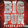 Big Pun - 100% (TCabby Remix)