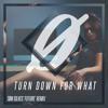 DJ SNAKE feat. Lil Jon - Turn Down For What (Tøm Silves 'Future' Remix)