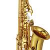 Piccola e fragile - rec/arr Midistage + altsaxofon YAMAHA YAS