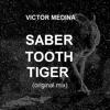 Victor Medina -  Saber Tooth Tiger (Original Mix) *FREE DOWNLOAD*