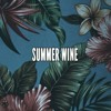 Nancy Sinatra - Summer Wine acoustic cover of a cover (Lana del Rey)