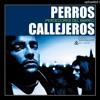 PXXR GVNG - PERROS CALLEJEROS-