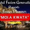 Foster Planner - Mola Kwata.