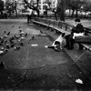 Tompkins Square Park    Mumford and Sons //(Cover)
