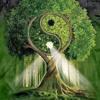 Lado verde da força
