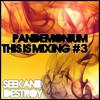 PANDEMONIUM ▶ This is mixing #3 Seek & Destroy