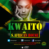 KWAITO [SOUTH AFRICAN HOUSE MUSIC]