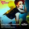 Guru Groove Foundation - Golden Love (Mr. Frenkie Remix)