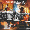 Download Wild Fire