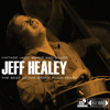 Jeff Healey - 02 - The Wild Cat