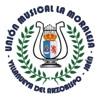 Concierto de Tributos al Pop & Rock - Unión Musical La Moraleja (2015)