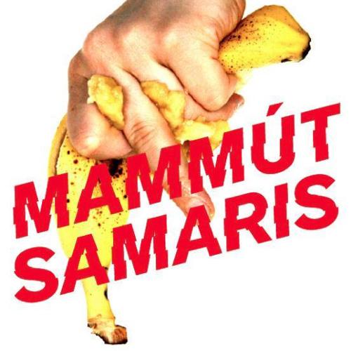 Mammút - Ströndin (Samaris remix)