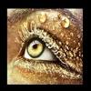Eyes on fire (Prod. Jonny Benjamin)
