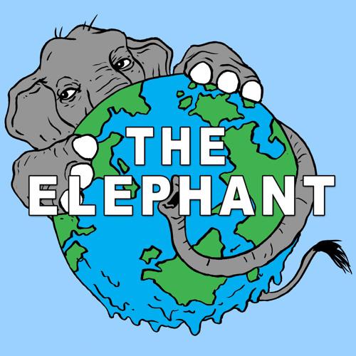 A Sneak Peek of The Elephant