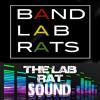 LAB RAT SOUND DANCE MUSIC Mega Mix Snips(House of Rats) FREE DOWNLOAD