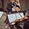 Unwritten - Natasha Bedingfield - Aramis String Quartet Cover
