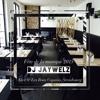 DJ JAYWELZ | Live @ Les Bons Copains, Strasbourg (Fête de la musique 2015)