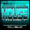 Gotta Have House wbmx house mix dj slik