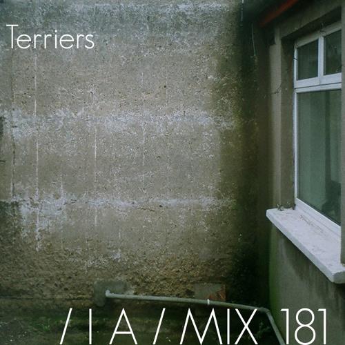 IA MIX 181 Terriers