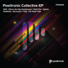 Positronic Collective EP: D05 - Where Are My Headphones (POSD010)