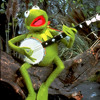 Kermit - Luke Bryan - Kick The Dust Up