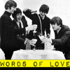 THE BEATLES - Words Of Love (Cover)