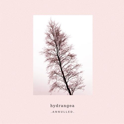 Hydrangea - Dawn Lights | ANNLP01 (Album)