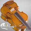 Sound Sample: Bridge Golden Tasman ac/el violin (5-string version) [AMPLIFIED]