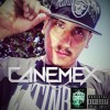 Dont Cry For A G - CaneMex FM$ (2Pac  Remex) 2k15