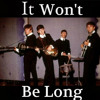 THE BEATLES - It Won't Be Long (Cover)