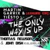 Martin Garrix & Tiesto VS Thomas Newson & John Dish - The Only Way Is Up Kalavela (Axwhine Edit)
