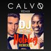DJ Antoine feat. Akon - Holiday (CALVO Remix)