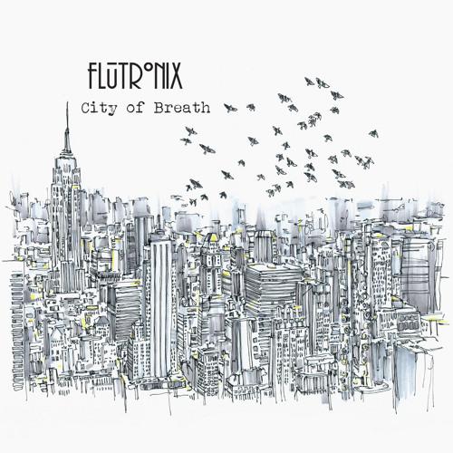 Flock (Acoustic Version)