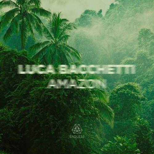 """Luca Bacchetti """"Amazon"""" NDL013 (snippet pt.1)"""