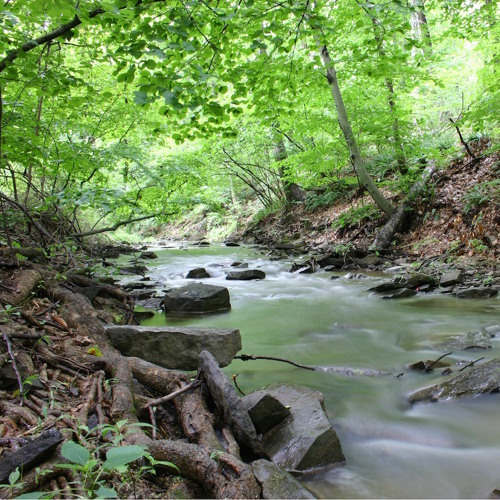 Eimeo Creek (Bagpipes Only)