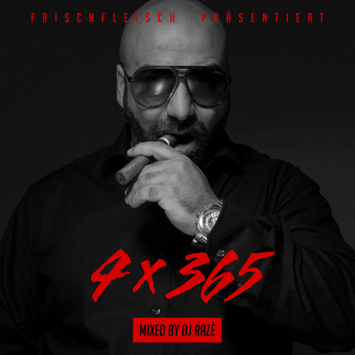 "Frischfleisch ""4x365"" Mixtape by DJ Razé"