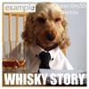 Example - Whiskey Story(Steve Ore Remix)