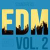 EDM Vol. 2 for NI Massive - Official Demo