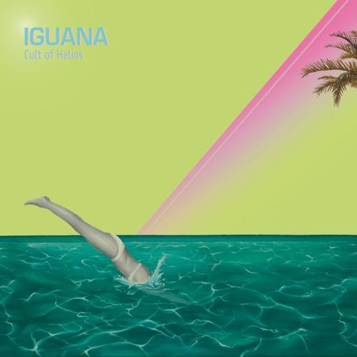 Iguana - Josiah