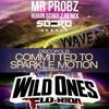 Falling Wild Waves (Soero Mashup) - Dubvision vs Flo Rida & Sia vs Mr Probz & Ro...