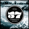 INTERLUDE 036 - SYMBIOTIC SOUNDS ( POLAND )