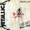 Metallica - MEXICO CITY 1993 LIVE SHIT