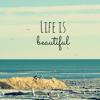 Tim McMorris - Life Is Beautiful (Adrià Contreras Cover)