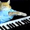 Atirei O Pau No Gato Versão Jazz (GalaxyVintage D)