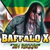 03.Baffalo X- l will be there