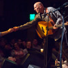 Tim Flannery and the Lunatic Fringe at Santa Cruz Mountain Sol Festival, 2015