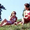 GYAWS 8.05 Summer Love